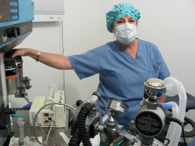 Anesthesia Nurse